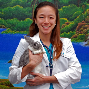 Dr. Carrie Hsing